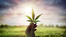 Where one of Wall Street's top marijuana analysts sees 80% upside