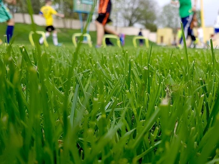 Howell is closing all local parks effective immediately, according to Township OEM Coordinator Victor Cook.
