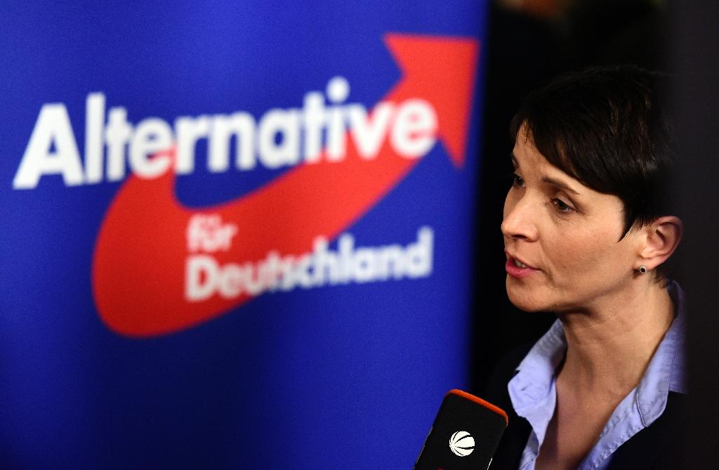Alternative fur Deutschland - The AfD: Germanys New Nazis