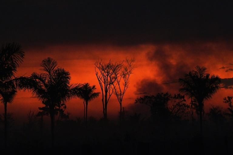 Smoke rises from an illegal fire in the Amazon rainforest reserve, north of Sinop in Mato Grosso state, on August 11