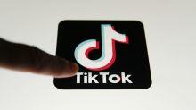 """TikTok : des jeunes internautes """"rejouent"""" la Shoah dans des vidéos polémiques"""