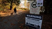 Dog deaths in North Vancouver may be tied to suspected mushroom poisoning: RCMP