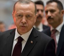 Turkey's Erdogan Joins In on Vilification of Soros