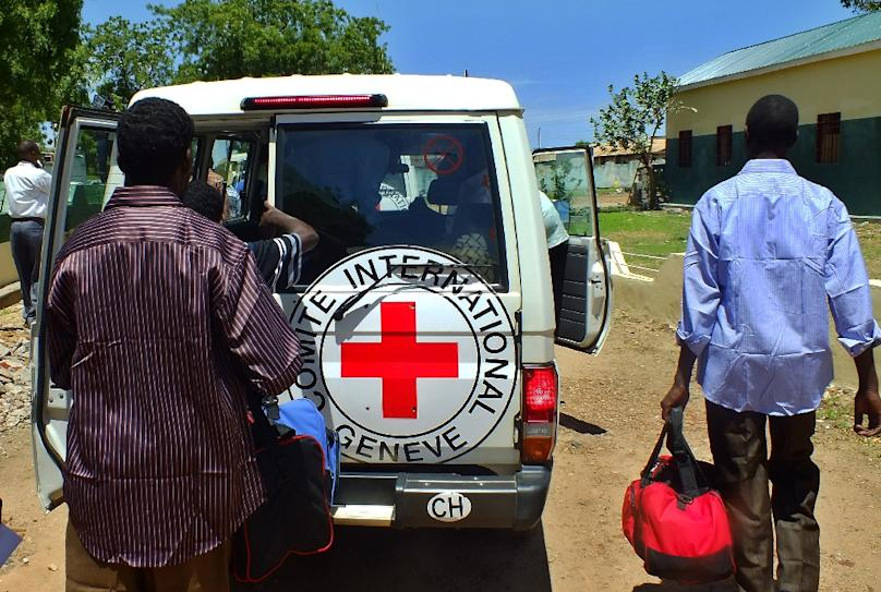 An international Red Cross worker was killed and a local colleague injured when the aid truck they were driving was attacked in northern Mali on Monday, the organisation said in a statement (AFP Photo/Waakhe Wudu)