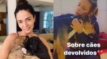 Luisa Mell critica Claudia Ohana por devolver cães adotados: 'Tenha responsabilidade'