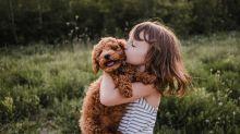 Emma, Mia oder Max: Tiernamen werden denen von Kindern immer ähnlicher