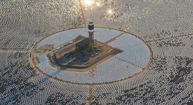 Miles de pájaros son chamuscados a su paso por esta planta solar