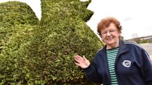 Widow keeps late husband's giant 8ft cock bush alive after his death