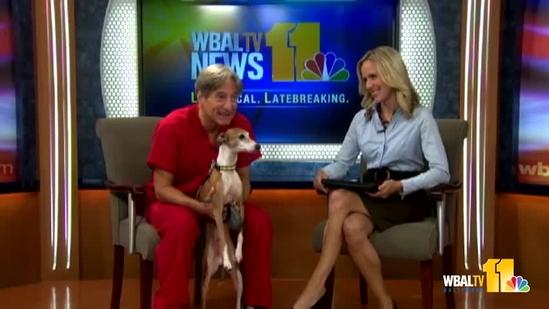 Oct. 4: Dr. Kim brings greyhound, answers questions