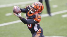 Bengals' Tee Higgins dubbed 'young superstar in the making'