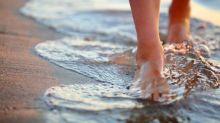 Pulgas de arena, el bicho que te puede picar en la playa y pasa desapercibido