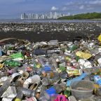 Study: Take-out food, drink litter make up vast majority of plastics polluting world's oceans