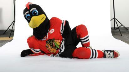 NHL's Blackhawks probe mascot's fan fight
