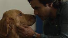 'The Art of Racing in the Rain' Trailer: Milo Ventimiglia Loves His Dog, and Amanda Seyfried