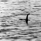 DNA sampling may help scientists find the Loch Ness monster