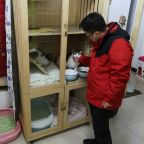 Animal activist in China's Wuhan happy to be back to routine rescues