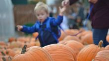 Pumpkin-palooza at Lester's Farm Market carves out cash for a good cause