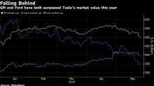The Bursting of the Tesla Stock Bubble