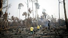 Brazil's Amazon fires worsen in September, threaten virgin forests