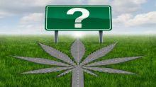 Marijuana ETFs Bounce Back: Can the Rally Last?