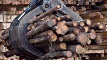 Sussex-based woodlot marketing board files appeal in J.D. Irving case