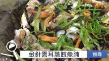 食譜搜尋:金針雲耳蒸鯇魚腩