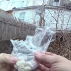 Cop Suspended After Body Camera Video Shows Him Planting Drugs