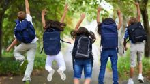 Les écoles en forêt : un modèle éducatif à importer en France ?