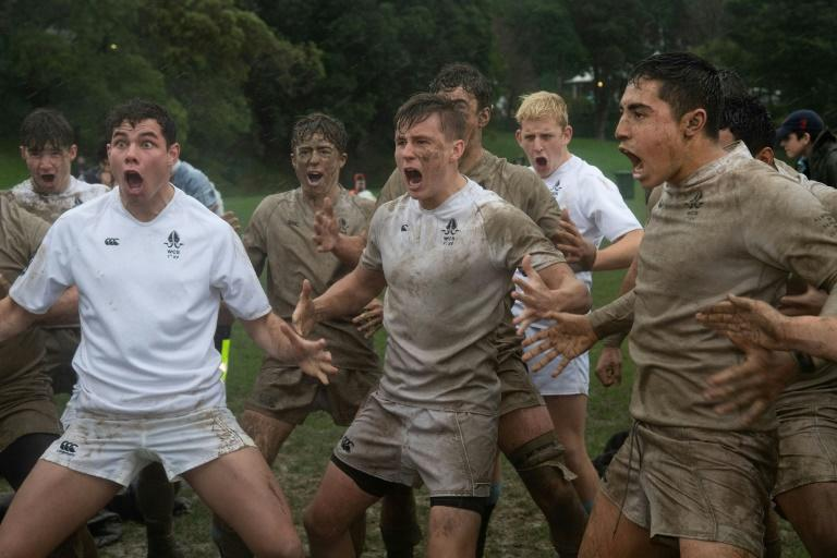 Alarm at New Zealand's falling schoolboy rugby numbers