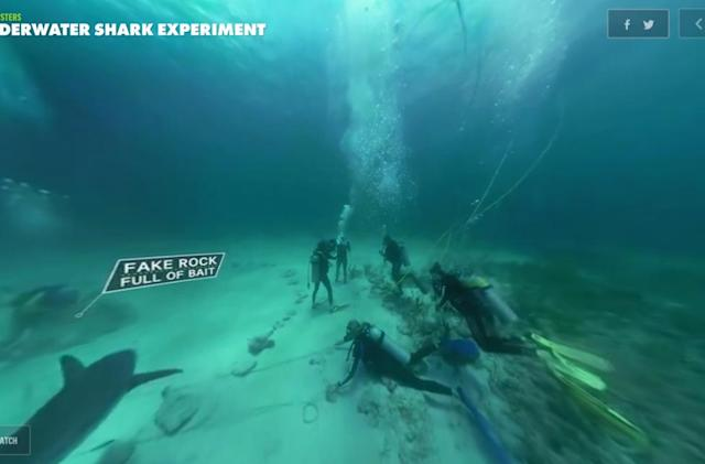 Discovery launches short-form VR videos, starting with sharks