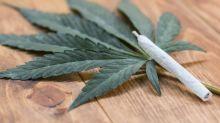 Marijuana Stocks Are Destroying Shareholder Value