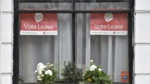 Lead Brexit campaign group faces police inquiry over its spending