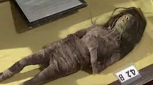 Shrunken Head Used in '70s Film Wise Bloods Revealed to Be Real and 'Made from Human Tissue'