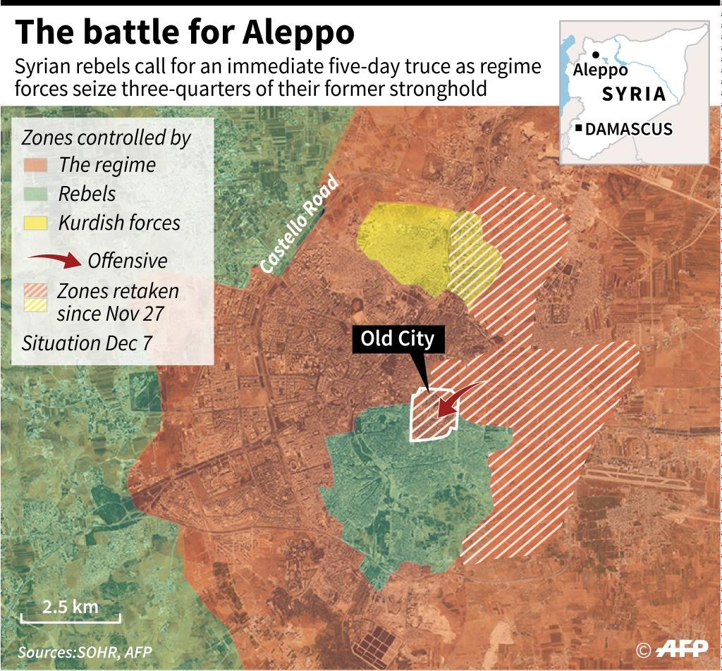 Rebels in Aleppo have called for a truce (AFP Photo/Sophie Ramis, Simon Malfatto, Valentina Breschi, Frédéric Bourgeais)