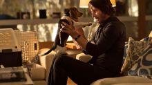 'Avengers: Endgame' meme takes over social media, avenging 'fallen' characters from John Wick's dog to Ned Stark