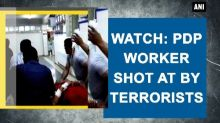 Watch: PDP worker shot at by terrorists