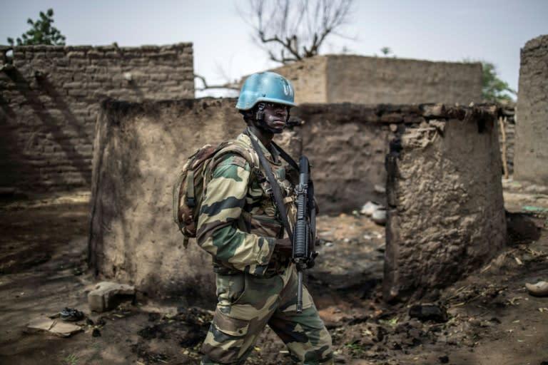 UN peacekeeping forces have been helping Malian troops in the battle on jihadists