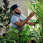 Hilton Carter's New Collection with Target Has Everything a Houseplant Parent Could Ever Need