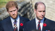 Prince Harry and Prince William's royal rift 'very real, very ugly'