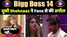 Bigg Boss 14: Shahnaaz Gill reacts to Nikki Tamboli & Sidharth Shukla