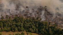 Ministério do Meio Ambiente anuncia que vai suspender ações de combate a desmatamento e queimadas a partir de segunda