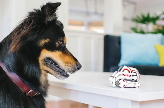 Adorable Cozmo robot will soon recognize pets