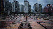 China web users take aim at property clampdown