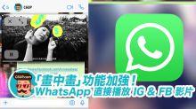 WhatsApp 加入支援「畫中畫」播放 IG & FB 影片