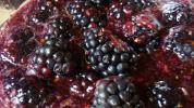 Pre-Diabetics Need To Know About This Food