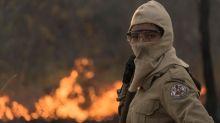 Queimadas no Pantanal: multas do Ibama despencam apesar de recorde de incêndios