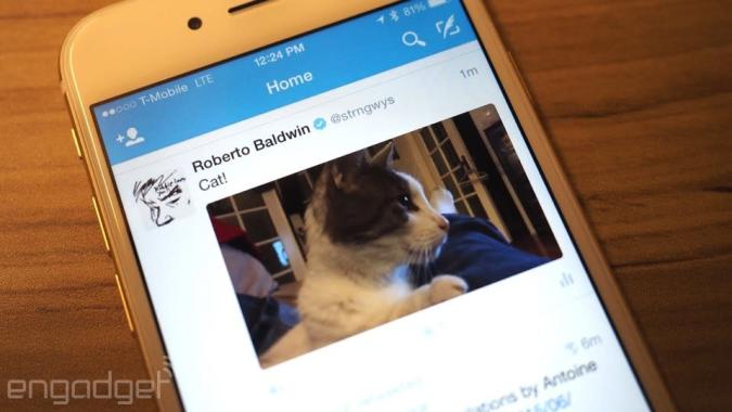 Twitter automatically plays videos on iOS and the web