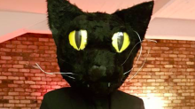 This man dressed up as his cat for Halloween and his cat was NOT happy about it