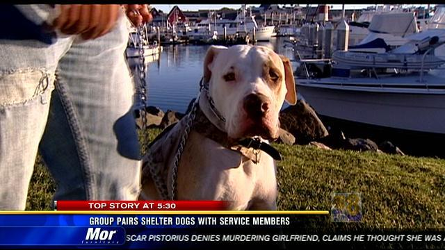 Group pairs shelter dogs with service members