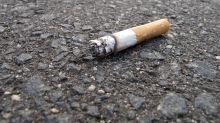 Gift in der Natur: Darum sollte man Zigarettenstummel nicht auf die Straße werfen